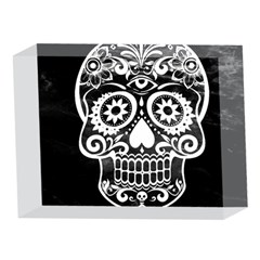 Skull 5 x 7  Acrylic Photo Blocks