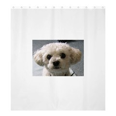 Bolognese Shower Curtain 66  x 72  (Large)