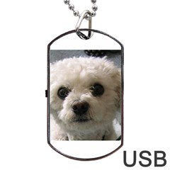 Bolognese Dog Tag USB Flash (Two Sides)