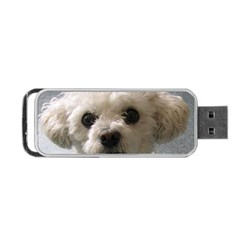 Bolognese Portable USB Flash (Two Sides)