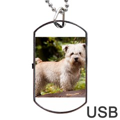 Glen Of Imaal Full wheaton Dog Tag USB Flash (One Side)