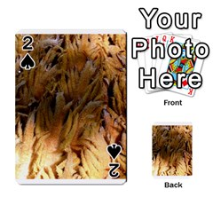 Sago Palm Playing Cards 54 Designs
