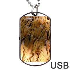 Sago Palm Dog Tag Usb Flash (two Sides)