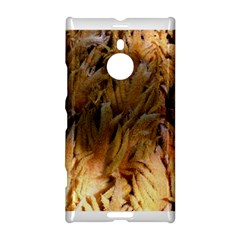 Sago Palm Nokia Lumia 1520