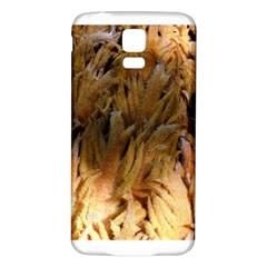 Sago Palm Samsung Galaxy S5 Back Case (white)