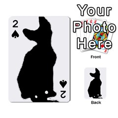 Cornish Rex Silo Playing Cards 54 Designs