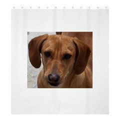 Dachshund Shower Curtain 66  x 72  (Large)