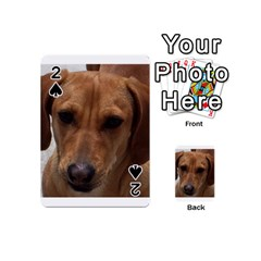 Dachshund Playing Cards 54 (Mini)
