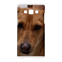 Dachshund Samsung Galaxy A5 Hardshell Case