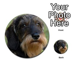 Wirehaired Dachshund Multi-purpose Cards (Round)