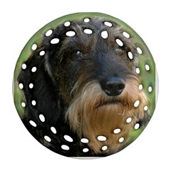 Wirehaired Dachshund Round Filigree Ornament (2Side)
