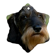 Wirehaired Dachshund Snowflake Ornament (2-Side)