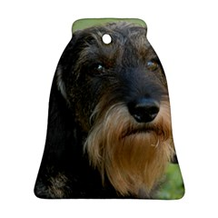 Wirehaired Dachshund Bell Ornament (2 Sides)