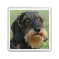 Wirehaired Dachshund Memory Card Reader (Square)