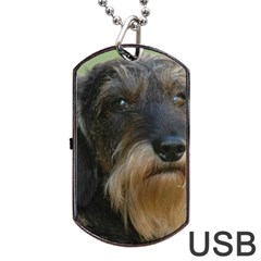 Wirehaired Dachshund Dog Tag USB Flash (Two Sides)