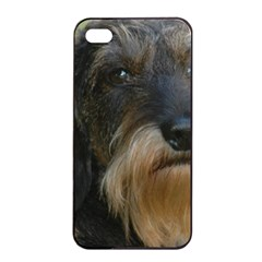 Wirehaired Dachshund Apple iPhone 4/4s Seamless Case (Black)