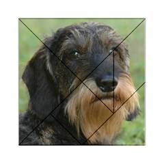 Wirehaired Dachshund Acrylic Tangram Puzzle (6  x 6 )