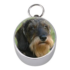 Wirehaired Dachshund Mini Silver Compasses