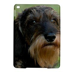 Wirehaired Dachshund iPad Air 2 Hardshell Cases