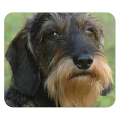 Wirehaired Dachshund Double Sided Flano Blanket (Small)