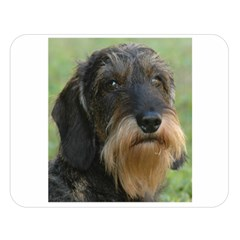 Wirehaired Dachshund Double Sided Flano Blanket (Large)