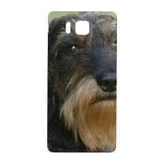 Wirehaired Dachshund Samsung Galaxy Alpha Hardshell Back Case