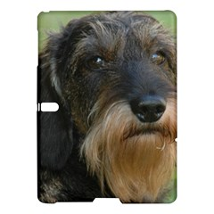 Wirehaired Dachshund Samsung Galaxy Tab S (10.5 ) Hardshell Case