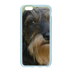 Wirehaired Dachshund Apple Seamless iPhone 6 Case (Color)