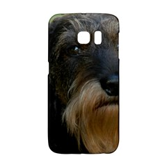 Wirehaired Dachshund Galaxy S6 Edge