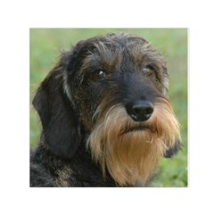 Wirehaired Dachshund Small Satin Scarf (Square)