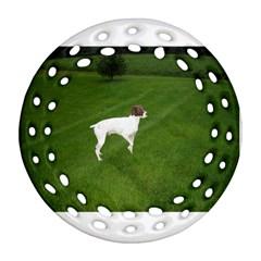 German Shorthair Pointer Full Ornament (Round Filigree)