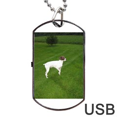 German Shorthair Pointer Full Dog Tag USB Flash (Two Sides)