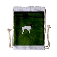 German Shorthair Pointer Full Drawstring Bag (Small)