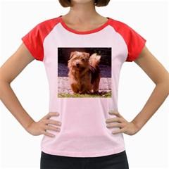 Norfolk Terrier Full Women s Cap Sleeve T-Shirt
