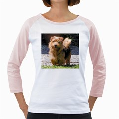Norfolk Terrier Full Girly Raglans
