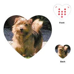 Norfolk Terrier Full Playing Cards (Heart)