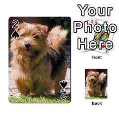 Norfolk Terrier Full Playing Cards 54 Designs