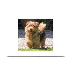 Norfolk Terrier Full Plate Mats