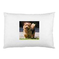 Norfolk Terrier Full Pillow Cases