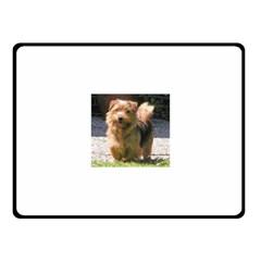 Norfolk Terrier Full Fleece Blanket (Small)