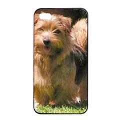 Norfolk Terrier Full Apple iPhone 4/4s Seamless Case (Black)