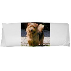 Norfolk Terrier Full Body Pillow Cases (Dakimakura)