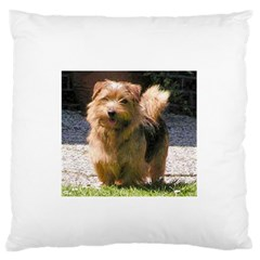 Norfolk Terrier Full Large Flano Cushion Cases (Two Sides)