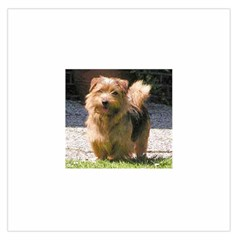 Norfolk Terrier Full Large Satin Scarf (Square)