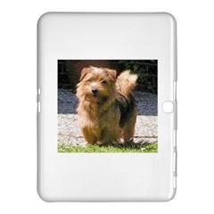 Norfolk Terrier Full Samsung Galaxy Tab 4 (10.1 ) Hardshell Case