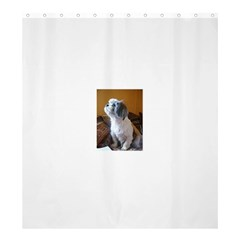 Shih Tzu Sitting Shower Curtain 66  x 72  (Large)