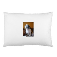 Shih Tzu Sitting Pillow Cases (Two Sides)