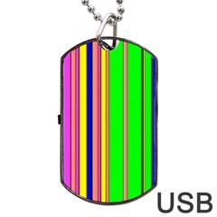 Hot Stripes Rainbow Dog Tag USB Flash (One Side)