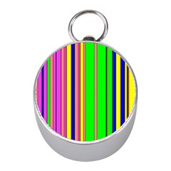 Hot Stripes Rainbow Mini Silver Compasses