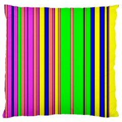 Hot Stripes Rainbow Large Flano Cushion Cases (one Side)